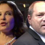 Ashley Judd exige que Harvey Weinstein responda por los daños que le causó acoso sexual (VIDEO)