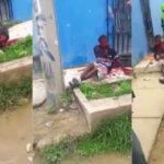 Colombia: Con piedras y palos matan cruelmente a presunto violadorde niña y tres mujeres (VIDEO)