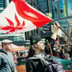 Canadá: Senado aprueba la ley que legaliza el consumo de la marihuana