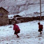 Revelan que 646 peruanos han muerto de neumonía este año