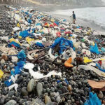 Día del Ambiente: Ecuador insta a luchar contra el uso del plástico