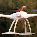 Chile: Presentan robot lazarillo y dron que protege flora y vegetación nativa