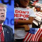"""EEUU: Trump ahora """"culpa"""" a los demócratas de la separación de familias de inmigrantes"""