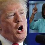Trump amenaza en Twitter a congresista Maxine Waters que pidió acosar a su gabinete