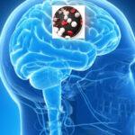 Estudio descubre cómo un tipo de leucemia consigue llegar al cerebro