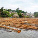 Loreto: Inmovilizan cargamento de madera de presunto origen ilegal