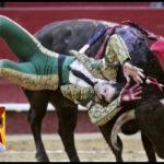 España: Toro le arranca 20 centímetros decuero cabelludo al diestro Juan José Padilla (VIDEO)