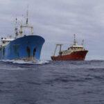 """Pesca ilegal: Transbordos en alta mar son la trampa del pescado """"invisible"""""""