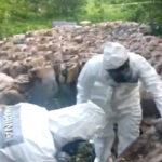México: Decomisan más de 50 toneladas de metanfetaminas del cartel de Sinaloa (VIDEO)
