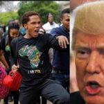 Sudáfrica acusa a Trump de querer dividirlos con apoyo a sector de granjeros blancos