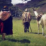 Wiñaypacha, primera película en aimara, representará a Perú en los Oscar y Goya