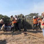 Incendio forestal afecta a 120 hectáreas de la mayor formación de algarrobos