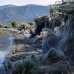 Gigantesca y densa telaraña cubre la vegetación de una playa en Grecia