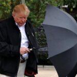 Donald Trump reconoce que el cambio climático no es un engaño