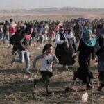 Cuatro palestinos muertos y 85 heridos en protestas del viernes en Gaza