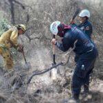 Dan por extinguido incendio en la reserva natural Bosque de Pómac, de Perú