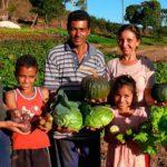 FAO: Gobiernos tienen más de una vía de comprar al pequeño agricultor