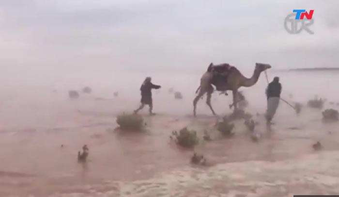 Lluvias torrenciales provocaron inundaciones en el desierto — Arabia Saudita