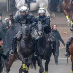 Bélgica: Batalla campal en manifestación de la ultraderecha contra pacto migratorio de la ONU (VIDEO)