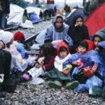OMS: Inmigrantes y refugiados no representan un riesgo de enfermedades exóticas