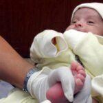 Desarrollan un análisis de sangre para conocer las primeras etapas de la vida