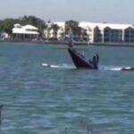 Al menos cinco muertos tras caer una avioneta en un lago de Florida