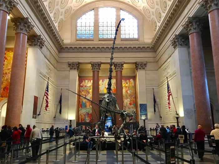 Museo de Historia Natural de Nueva York cancela gala a Bolsonaro