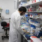 Científicos de Uruguay y EEUU prueban eficacia de droga contra la leucemia