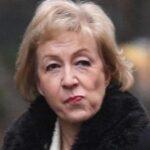 Dimite la líder conservadora en el Parlamento británico por desacuerdo con May