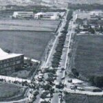 Facebook: Publican antigua foto de la avenida Benavides (IMAGEN)