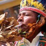 Descubren el uso de plantas psicotrópicas en antiguos ritos en Sudamérica