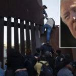 Trump defiende ante tribunal su derecho de negar asilo a inmigrantes indocumentados