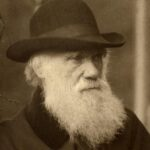A subasta una de las primeras copias de El origen de las especies de Darwin
