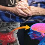 Mal de Parkinson: Estudio demuestra que se origina en el tracto gastrointestinal