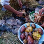 "Quito alberga el banquete de la madre tierra peruana: la ""Pachamanca"""