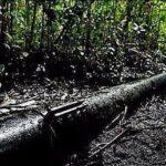Petroperú denuncia nuevo ataque contra principal oleoducto del país