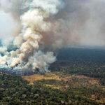 Video muestra cómo el fuego destruye la Amazonía sin que nada lo detenga