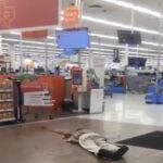 EEUU Confirman que hay varios muertos en tiroteo en centro comercial de Texas