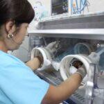 Lambayeque destinará S/ 3 millones para adquirir cinco incubadoras