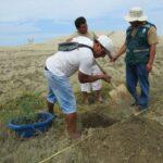 Lambayeque: Sentenciados por delitos ambientales reforestarán Mórrope