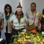 Capacitan a intérpretes culturales de Ucayali y Loreto para fortalecer labor en PIAS