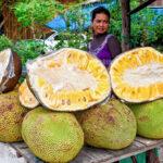 La fruta más grande del mundo se cultiva en la Amazonía peruana (Fotos)