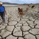 La concentración de gases de efecto invernadero alcanza nuevas cifras récord