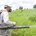 Industria de plaguicidas requiere cerca de US$ 286 millones para desarrollar una molécula