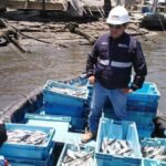 Produce decomisó más de 35 toneladas de recursos pesqueros