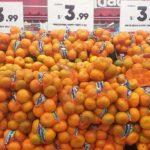 INEI: Inflación en Lima Metropolitana subió 0.11% en noviembre