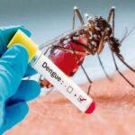 Cuba: Prueban técnica para controlar al mosquito transmisor del dengue
