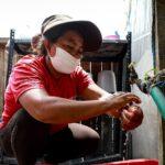 Covid-19 en Perú: Aumenta cifra de contagios con 59 nuevos decesos