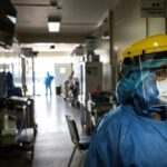 OMS: Coronavirus tiene origen animal y no se creó en laboratorio