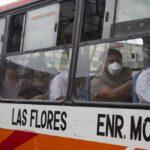 Lima y Callao: Transporte público podrá usar el 100% de su flota